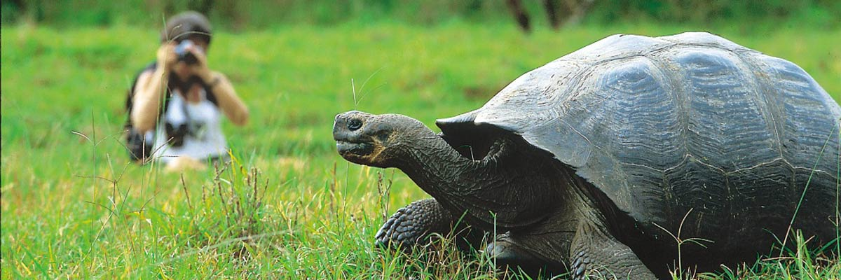 National Geographic Tours To Galapagos
